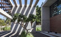 Shadow play: Pitsou Kedem Architects cast an Israeli residence in a new light | Architecture | Wallpaper* Magazine