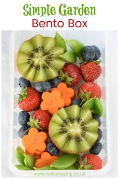 Simple Garden Bento Box How to make a simple garden themed bento box - this fun idea is a great way to serve up fruit and veggies to kids along with their lunch time sandwiches Bento Box Lunch For Kids, Lunchbox Ideas, Lunch Box, Bento Recipes, Vegan Recipes, Vegan Foods, Fruits And Veggies, Healthy Snacks, Easy Snacks