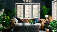 Not all plant-lovers can afford to own this many houseplants, but Bloomscape sure knows how to make it look that way. This cozy living room design is one Living Room Background, Office Background, Dark Blue Walls, Virtual Makeover, Outdoor Furniture Sets, Outdoor Decor, Space Furniture, Cozy Living Rooms, Your Space