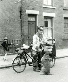 1920s Warrick Walls ice cream tricycle, and well-mannered dog.