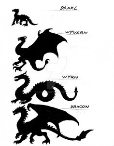 Tagged with dragon, mythical creatures; Shared by Not sure if dragon? Here's a handy guide. Dragon Artwork, Dragon Drawings, Wolf Drawings, Drawings Of Dragons, Mythological Creatures, Magical Creatures, How Train Your Dragon, Creature Design, Dungeons And Dragons