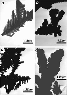 TEM images of nickel dendrites || credit goes to Jing Ye , Qian-Wang Chen *, Hai-Ping Qi and Nan Tao || Formation of Nickel Dendritic Crystals with Peculiar Orientations by Magnetic-Induced Aggregation and Limited Diffusion