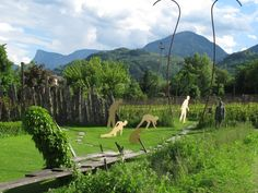 IMG_4925 South Tyrol, Mountains, Nature, Travel, Voyage, Viajes, Traveling, The Great Outdoors, Trips