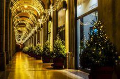 Christmas lights | Flickr - Photo Sharing! - Via Farini, Bologna. Natale 2014