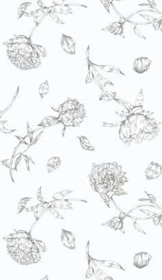 A pretty and romantic wallpaper design of peonies and petals.