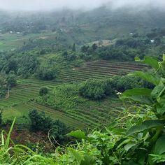 Excursión al norte (Lao Cai - Bac Ha, día 4 #vietnam16im)