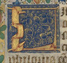 Biblia sacra, libri sapientiales Auteur : HIERONYMUS (s.). Auteur du texte Date d'édition : 1490-1500 Type : manuscrit Langue : Latin