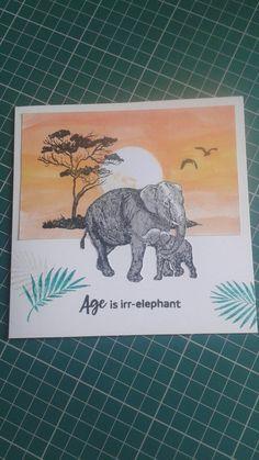 Age is irr-elephant birthday card
