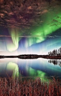 Aurora Borealis, Alaska by jo Beautiful Sky, Beautiful Landscapes, Beautiful World, Creative Pictures, Nature Pictures, Cool Pictures, Aurora Borealis, Landscape Photography, Nature Photography
