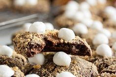 Chocolate S'mores Cookies – a delicious double chocolate cookie with a soft graham cracker coating and topped with gooey marshmallows.