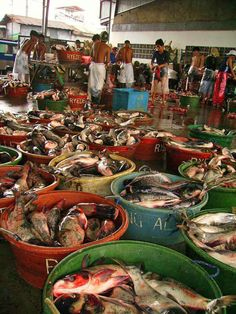 Celebes, Indonesia  fish market