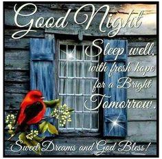 Good Night Sleep Well, Good Night Everyone, Cute Good Night, Good Night Friends, Good Night Gif, Good Night Wishes, Good Night Sweet Dreams, Night Night, Night Time