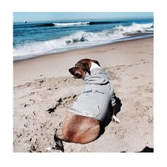 Heading to the beach this weekend... A Must have is our beach bum hoodie  @vandvross trendsetter by themaxbone
