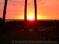 Kahaluu Beach Park is one of the Big Island's best spots for snorkeling, picnics and learning to surf. Learn To Surf, Big Island Hawaii, Snorkeling, Hawaiian, Surfing, Vacation, Sunset, Park, Beach