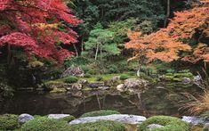 A new book by Yoko Kawaguchi explores Japan's stunning and tranquil Zen gardens Beautiful Flowers Garden, Beautiful Gardens, Most Beautiful, Kyoto, Zen Gardens, Japanese Gardens, Chinese Garden, Public Garden, House In The Woods