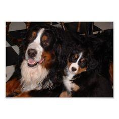 Buckminster and Molly