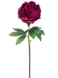 Burgundy Silk Peony   Wedding Flowers   Afloral.com