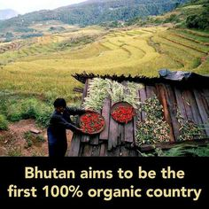 Bhutan aims to be the first 100 % organic country