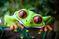 I love tree frogs. Their big red eyes are so awesome. Animals And Pets, Baby Animals, Funny Animals, Cute Animals, Wild Animals, Funny Frogs, Cute Frogs, Beautiful Creatures, Animals Beautiful