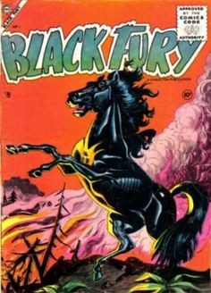 "Fury - Black stallion on the live-action Saturday morning western adventure FURY/NBC/1955-60 (syndicated from 1959 under the title ""Brave Stallion"" then rerun on NBC 1960 - 1966).  Fury belonged to an orphaned boy named Joey (Bobby Diamond) who lived at the Broken Wheel Ranch near Capitol City with his foster father, Jim Newton (Peter Graves) and his ranch hand Pete (William Fawcett). Joey was given Fury to teach him responsibility. Friends of the Broken Wheel Ranch included:  William…"