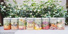 The Füd Revolution vending machines are custom-built from recycled timber, and sell everything from freshly made salads to yoghurt and muesli