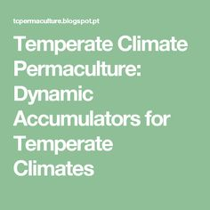 Temperate Climate Permaculture: Dynamic Accumulators for Temperate Climates