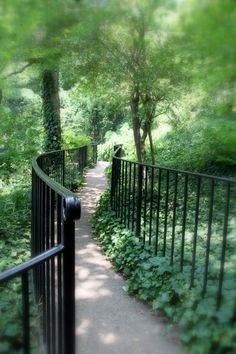 I love paths!