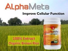 Alpha-Meta is the Generation trademark of ingredients containing a unique functional and cellular food formulation made up of alpha polysaccharides, amin. Whole Grain Rice, Organic Brown Rice, Human Nutrition, Cellular Level, Feminine Hygiene, Body Systems, Pure Products, Technology, Health