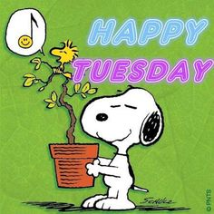 Happy Tuesday - Snoopy Holding a pot With a Small Tree Planted in It With Woodstock Sitting on a Branch of the Tree Singing Tuesday Quotes Good Morning, Happy Tuesday Quotes, Tuesday Humor, Morning Humor, Happy Quotes, Thursday, Friday Humor, Taco Tuesday, Happy Friday