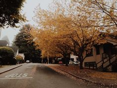 fresh-fallen-leaves:  sweater weather - Black coffee & golden autumn   coffeeautumnglory