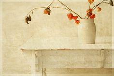 still life by Pamela Schmieder. Love the texture. See raewillow's photostream: http://www.flickr.com/photos/rayewillow/