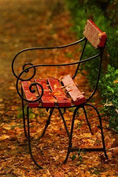 Park bench on a rainy, autumn day Seasons Of The Year, Best Seasons, Autumn Day, Autumn Leaves, Fallen Leaves, Autumn Harvest, Autumn Song, Happy Autumn, Autumn Inspiration