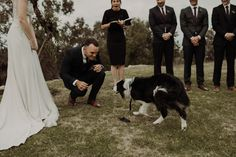 Pip + Mitch | Ebony Blush Photography | Perth Wedding Photographer | Perth Wedding Photos | Street Food Wedding | Fremantle Wedding Photos34 Perth, Street Food, Wedding Photos, Blush, Photography, Animals, Marriage Pictures, Photograph, Animales