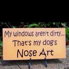 I saw this on FB and felt so touched. I have doggy nose art on all my windows, home and car. I love it so much!