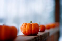 Little pumpkins are the best