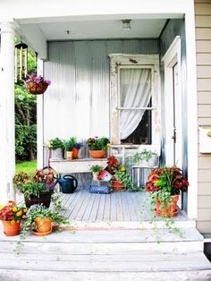 humble porch brought to life with potplants