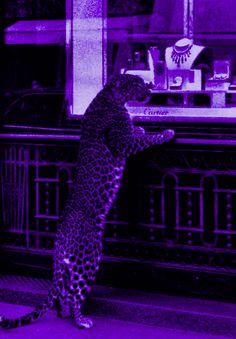 Violet Aesthetic, Dark Purple Aesthetic, Lavender Aesthetic, Aesthetic Colors, Aesthetic Pictures, Aesthetic Pastel Wallpaper, Aesthetic Backgrounds, Aesthetic Wallpapers, Purple Wall Decor