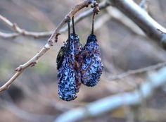 Prune mumificate de monilioză Earrings, Gardening, Permaculture, Plant, Ear Rings, Stud Earrings, Ear Piercings, Lawn And Garden, Ear Jewelry