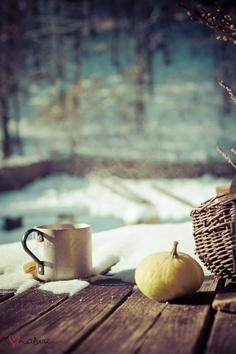 A frosty winter morning.  http://annabelchaffer.com/
