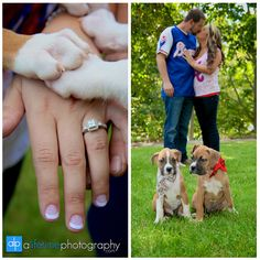 Save the date ideas with baseballs and bulldog puppies photography by A Lifetime Photography- A Knoxville Wedding/ engagement photographer