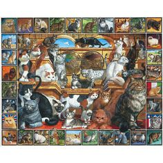 World of Cats 1000 Piece Puzzle: This is the ultimate jigsaw puzzle for cat lovers! Over sixty breeds of cats from around the world are identified by name and country of origin on this great new puzzle.  $14.99  http://www.calendars.com/Animal-Puzzles/World-of-Cats-1000-Piece-Puzzle/prod200400007072/?categoryId=cat490050=cat490050#