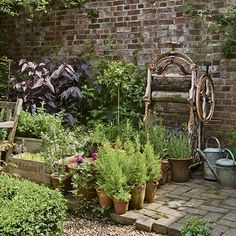 Country garden with potted plants
