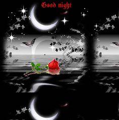 Good Night!!!!.....Sweet Dreams!!! (S) 10-12-16