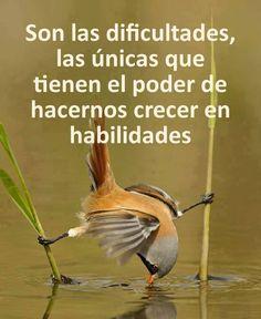 Son las dificultades las únicas que tienen el poder de....