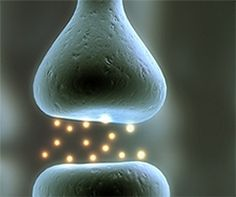 Wie funktioniert Hypnose neurobiologisch? — dasGehirn