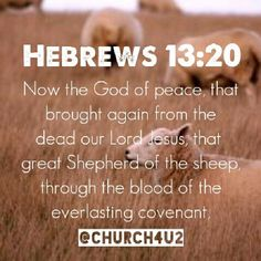 Hebrews 13:20 Contemporary English Version - God gives peace, and he raised our Lord Jesus Christ from death. Now Jesus is like a Great Shepherd whose blood was used to make God's eternal agreement with his flock.