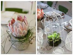 Wedding proteas and succulent Flower Table Decorations, Flower Centerpieces, Wedding Decorations, Wedding Flower Arrangements, Table Arrangements, Floral Arrangements, Protea Wedding, Wedding Flowers, Little Flowers