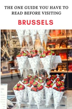 Two days in BRUSSELS : Where to sleep, eat & travel in the beautiful city of BRUSSELS | What to do and see in BRUSSELS | Travel destinations to add to your bucket list. Click through to see the full guide on www.hedonistit.com