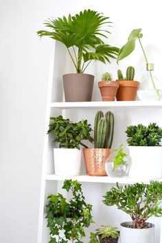 a UK creative DIY and interior lifestyle blog.
