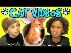 Kids React to Popular Cat Videos